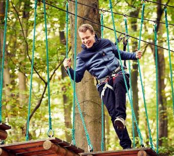 mand klatrer i gorilla park