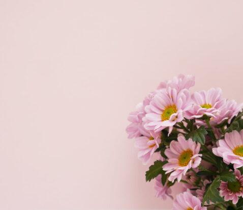 blomster - morefews.dk