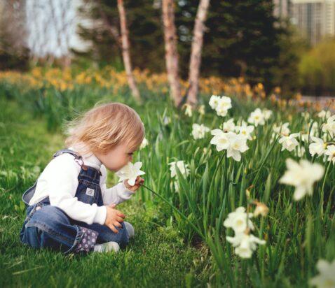 Barn I have med blomster