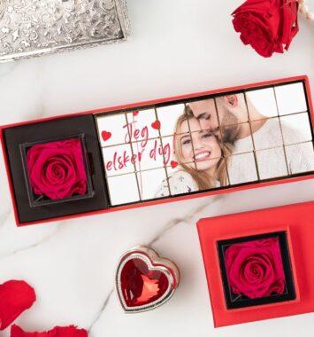 rose-hot-pink_1